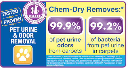 pet urine removal columbia